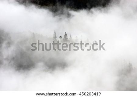 Amazing mountain landscape with dense fog. Carpathian Mountains - stock photo