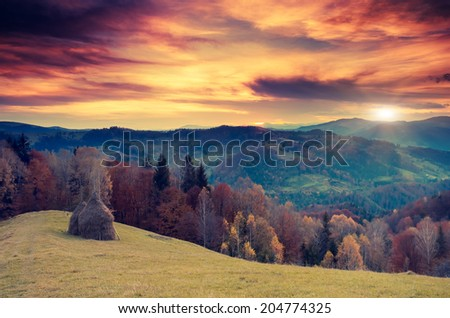 Amazing mountains in the morning sunlight with overcast sky. National Park. Carpathian, Ukraine, Europe. Beauty world. Retro filtered. Toning effect. - stock photo