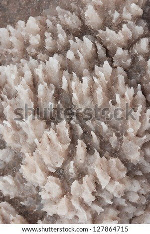 Amazing patterns and textures of mineral sediments in the Dead Sea coast - stock photo