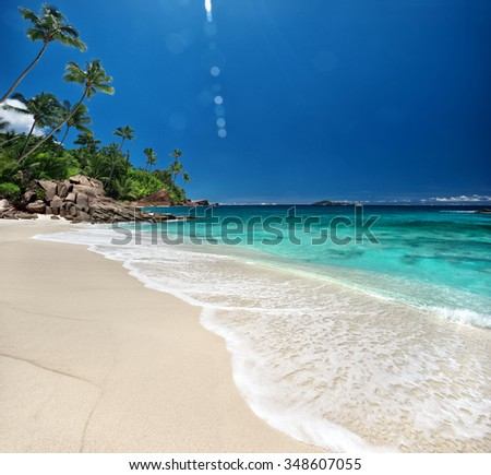 Amazing sandy beach with coconut palm trees and blue sky / outdoors photography of picturesque Seychelle islands - stock photo