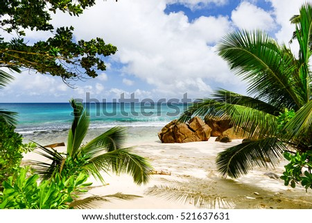 Amazing tropical beach
