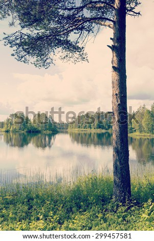 Amazing view by the lake through the branches and low point of view. Colorful sky with dramatic clouds. Image has a vintage effect applied to create some artistic flavor. - stock photo