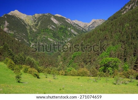 Amazing view of mountain river near lake Llebreta in national park Aiguestortes in Catalonia, Spain  - stock photo