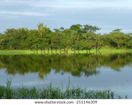 Amazon Landscape near Autazes, Brazil - stock photo