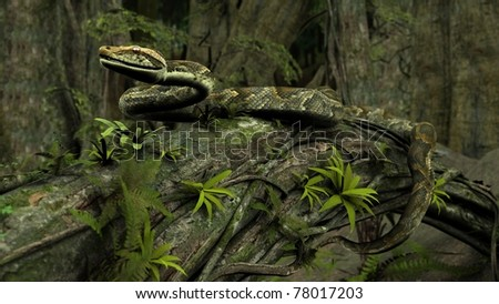 amazon python on tree trunk - stock photo