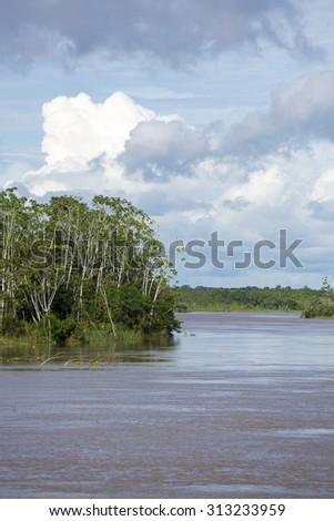 Amazon river and the rain forest with a cloudy blue sky. Amazon States, Brazil - stock photo