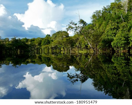 Amazon river reflections, Brazil  - stock photo