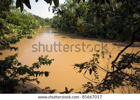 Amazonian river, the water brown with sediment, the rio Tiputini in Ecuador - stock photo