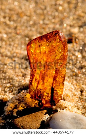 Amber on a beach of the Baltic Sea  - stock photo