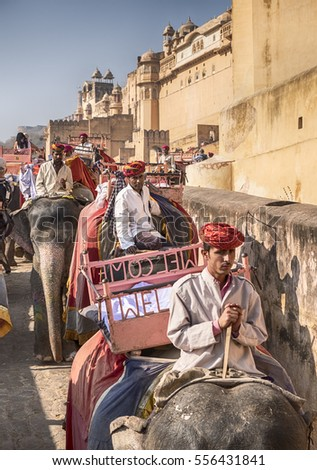 AMER, INDIA - NOVEMBER 18, 2016: Two lines of elephants travel to the Amber Fort in the city of Amer near Jaipur, India. One row goes up with tourists and the other comes down with just their drivers.