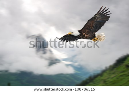 american bald eagle in flight illustrated over rocky mountain - stock photo