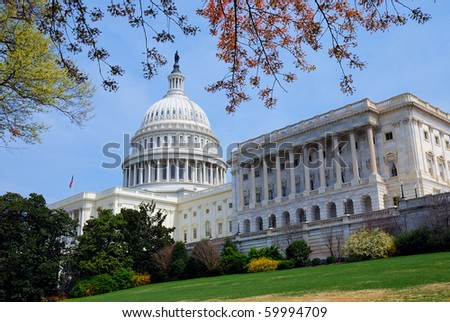 American Capitol Hill Building with tree, lawn and blue sky, Washington DC, USA - stock photo