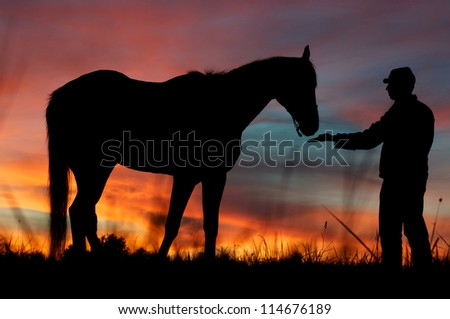 American civil war soldier with his horse - stock photo