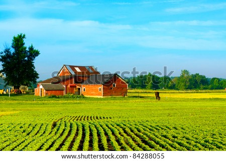 American Country - stock photo