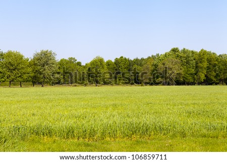 American Country Landscape - stock photo