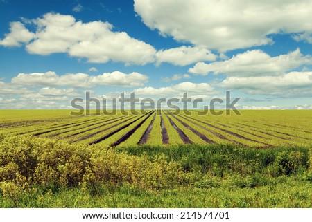 American Countryside - stock photo