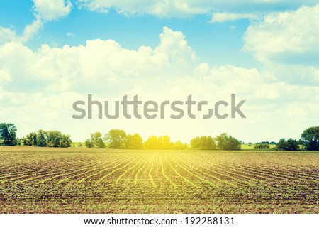 American Countryside With Blue  Cloudy Sky - stock photo