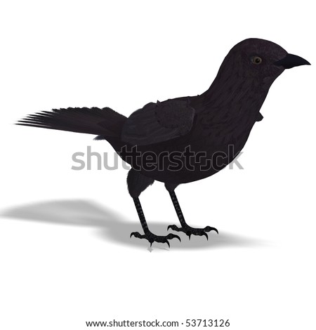 American Crow. 3D rendering with clipping path and shadow over white