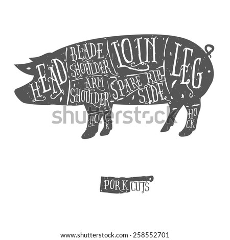 American cuts of pork, vintage typographic hand-drawn butcher cuts scheme - stock photo