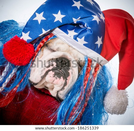 american dog - english bulldog wearing patriotic hat - stock photo