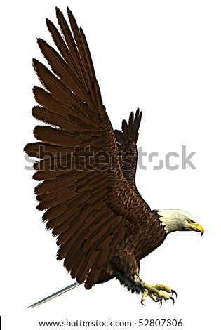 american eagle flying side - stock photo