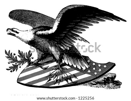 American Eagle on shield with olive branch - stock photo