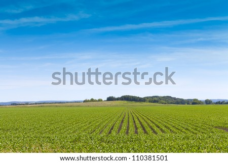American Farmland With Blue Sky - stock photo