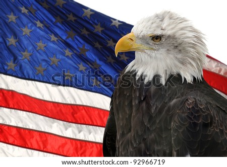 American flag and Bald Eagle, symbols of freedom and democracy - stock photo