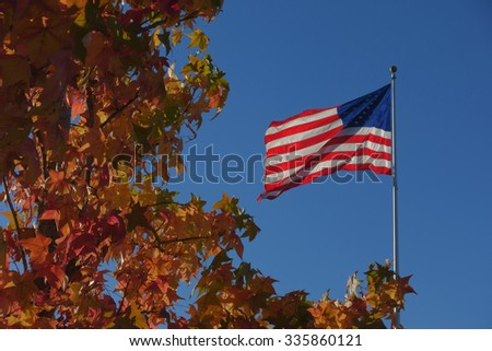 American flag blowing in the wind with colorful Autumn leaves in foreground                                - stock photo