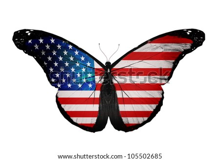 American flag butterfly flying, isolated on white background