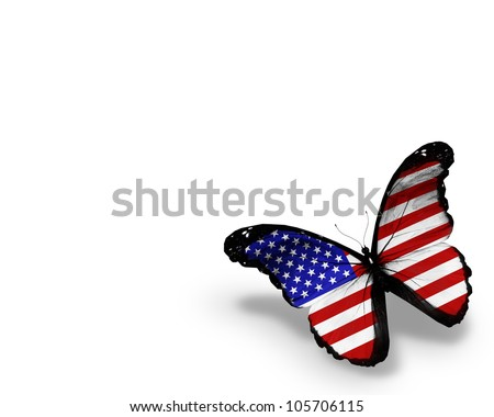 American flag butterfly, isolated on white background - stock photo