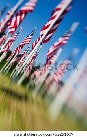 American flags at Memorial day - USA flags arranged on field. Shot angled and with a lensbaby for optical blur and limited depth of field. Focus on flag in background towards left.