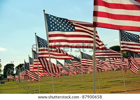 American Flags Flying in a Park - stock photo