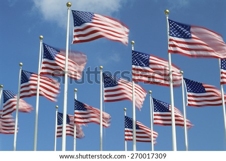 American flags flying in the wind, Washington, D.C. - stock photo