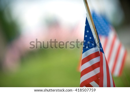 American flags lined up in the grass