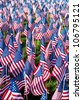 American flags on display for Memorial Day or July 4th - hundreds of flags cover a green field.  Vertical - stock photo