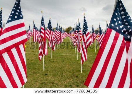 American Flags, Veterans Day