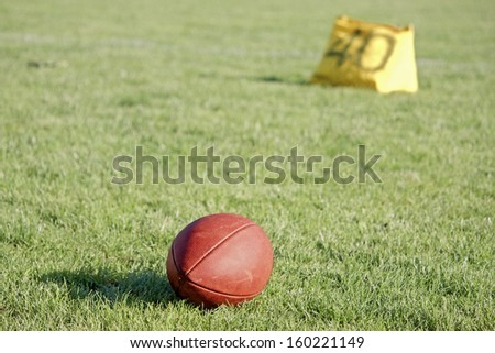 American football ball on the grass - stock photo