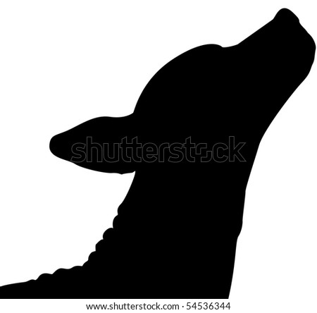 American Hairless Terrier Silhouette - stock photo