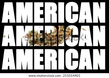 American Marijuana and Cannabis  - stock photo