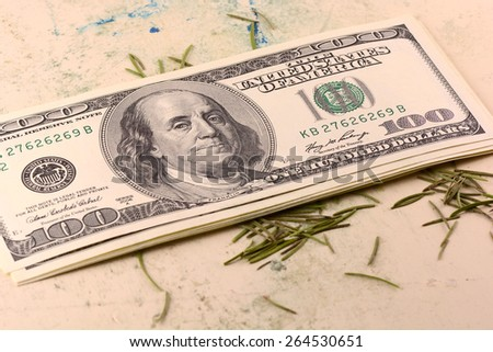 american money dollars  on old plate - stock photo