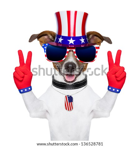american peace and victory fingers dog with red gloves and glasses - stock photo