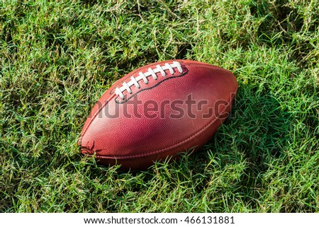 American Professional football on grass football field pitch