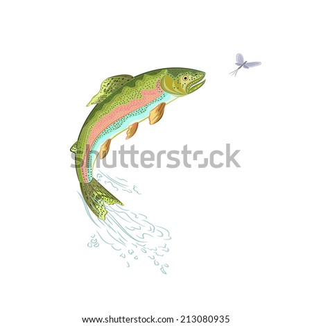 American trout jumps salmon predator there is also a format eps