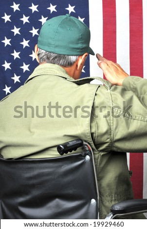 American veteran in wheelchair and fatigues saluting flag - stock photo