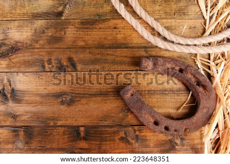 American West still life with old horseshoe and cowboy lasso - stock photo