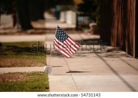 Americana Flag - stock photo