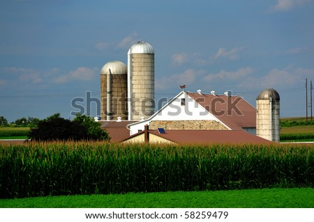 Amish Country Farm and fresh corn - stock photo