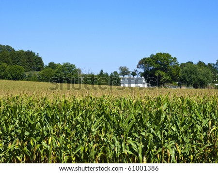 Amish Farm, Lancaster USA - stock photo