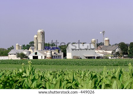 amish farm with crops - stock photo